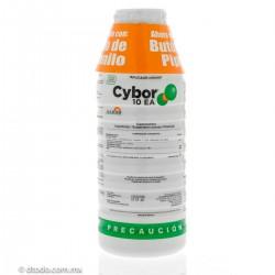 Cybor 10EA